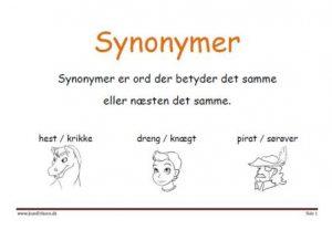 opgave synonym